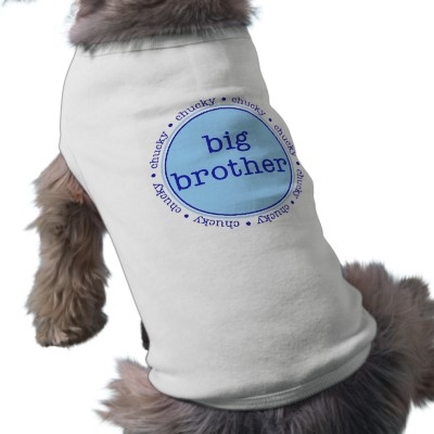 Personalized Dog Tee - Big Brother